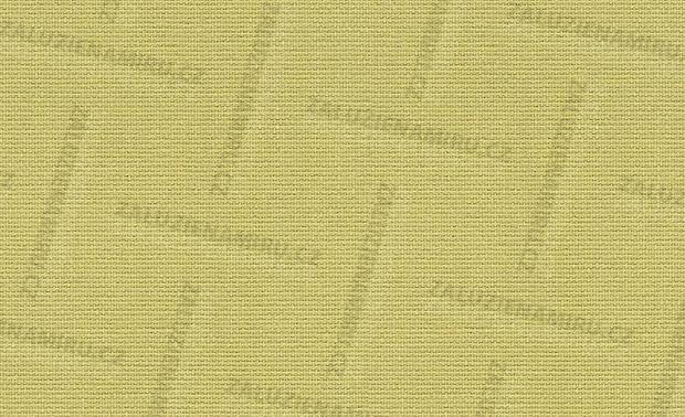 CARINA 10322 - světlá žlutozelená