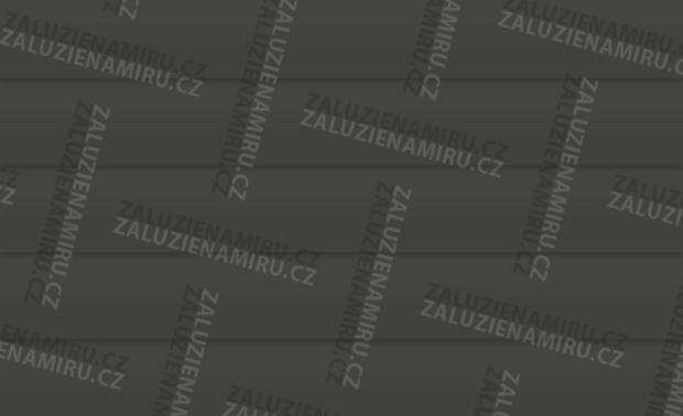 Šedočerná-lesk (380/21)
